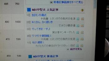 20100518124053.jpg
